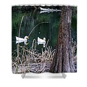 Ducks And Turtles Shower Curtain