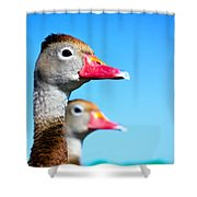 Ducks At Attention Shower Curtain