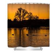 Ducks At Sunrise On Golden Lake Nature Fine Photography Print  Shower Curtain