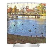 Ducks At The Park Pond Shower Curtain
