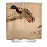 Ducks In Flight Shower Curtain