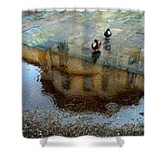 Ducks Of Isola Madre.italy Shower Curtain