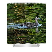 Ducks On Green Reflections - Panorama Shower Curtain