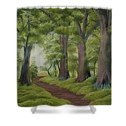 Duff House Walk Shower Curtain