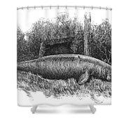 Dugong, Sea-cow Shower Curtain