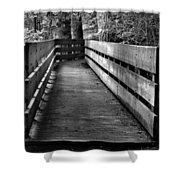 Dukes Creek Falls Walkway Shower Curtain