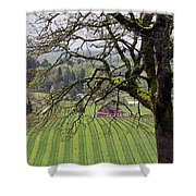 Dundee Hills Wine Country Shower Curtain