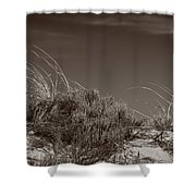 Dune And Blue Sky Shower Curtain