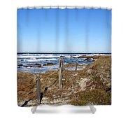 Dune Grass Shower Curtain by Barbara Snyder