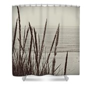 Dune Grass In Early Spring Shower Curtain