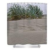 Dune Grass On Beach Dune Landscape Art Prints Shower Curtain