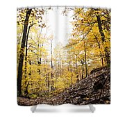 Dune Land Forest Shower Curtain