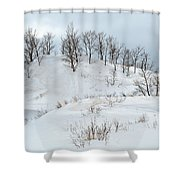 Dune Trees And Snow Shower Curtain
