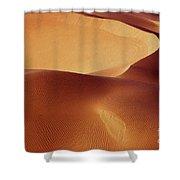 Dunes - 192 Shower Curtain
