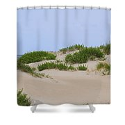 Dunes And Grasses 6 Shower Curtain