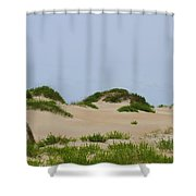 Dunes And Grasses 7 Shower Curtain