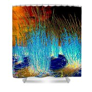 Dunes At Dusk Shower Curtain