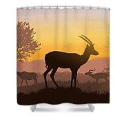Dusk In Kenya Shower Curtain