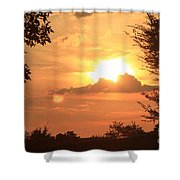 Dusk In The Trees Shower Curtain
