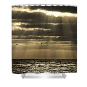 Dusk On Pacific Shower Curtain