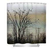 Dusk Sky Shower Curtain