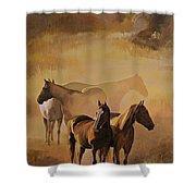 Dust Bowl Shower Curtain