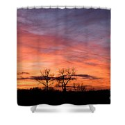 Dust Bunnies At Sundown Shower Curtain