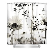 Dusty Travels Shower Curtain