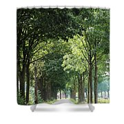 Dutch Landscape - Country Road Shower Curtain by Carol Groenen