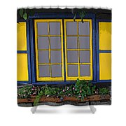 Dutch Window Shower Curtain