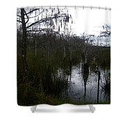Dwarf Cypress Pool Shower Curtain