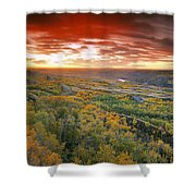 D.wiggett View Of Dry Island, Buffalo Shower Curtain
