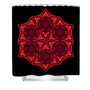 Dying Amaryllis IIi Flower Mandala Shower Curtain