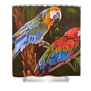 Dynamic Duo Shower Curtain by Phyllis Beiser