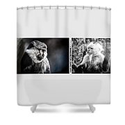 diptych Last hope of Freedom  Shower Curtain
