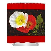 Eager Poppies Shower Curtain