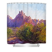 Eagle Crags Shower Curtain