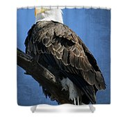 Eagle Eye Shower Curtain