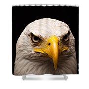 Eagle Eyed Shower Curtain