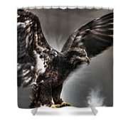 Eagle First Landing Shower Curtain