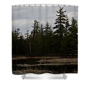 Eagle Home Shower Curtain