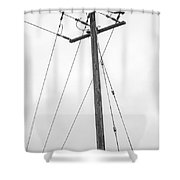 Eagle In Fog Shower Curtain