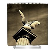 Eagle In Stone Shower Curtain