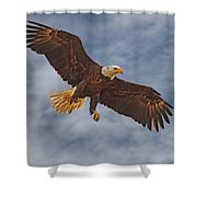 Eagle In The Sky Shower Curtain