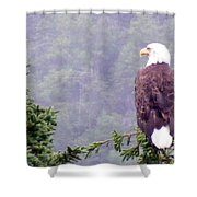 Eagle Looking For Breakfast On A Misty Morning Shower Curtain