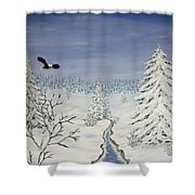Eagle On Winter Lanscape Shower Curtain