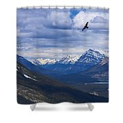Eagle Over Peyto Lake Shower Curtain