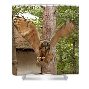 Eagle Owl Makes The Leap Shower Curtain
