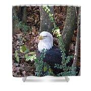 Eagle Pose Shower Curtain