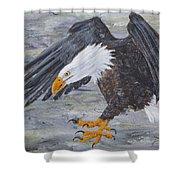 Eagle Study 2 Shower Curtain